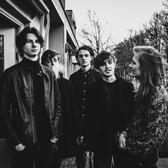 The Moonshine Lizard, Rock, Progressieve rock, Psychedelic band