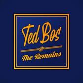 Ted Bos and the Remains, Rock, R&B, Progressieve rock band