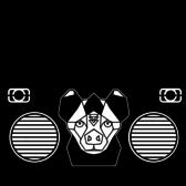 Kid Hyena, Alternatief, Electronic, Hip Hop band