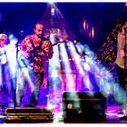 Roy Conejo, Rock, Rock 'n Roll, Pop band