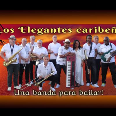 Los Elegantes Caribeños, Salsa, Merengue, Allround band