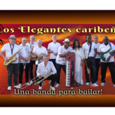 Los Elegantes Caribeños, Salsa, Merengue, Allround band