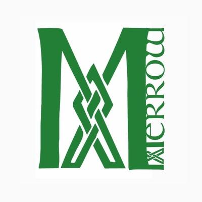 Merrow, Folk, Wereldmuziek, Keltisch band