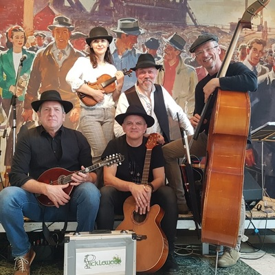 PICKLEWEED, Folk, Americana, Country band
