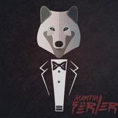 Martin Fërler , Pop, Funk, Soul band