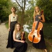 Trio Panache, Klassiek, Tango, Romantiek ensemble