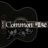 Common Ilse, Pop, Country, Rock band