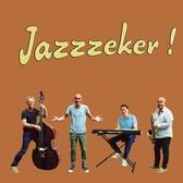 Jazzzeker, Easy Listening, Swing, Soul band