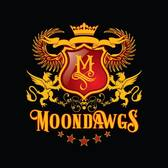 Moondawgs, Rock, Funk, 80s band