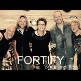 Fortify, Blues, Rock, Pop band