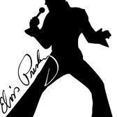 Elvis , Rock 'n Roll, Rockabilly, 60s soloartist