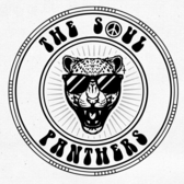 The Soul Panthers, Coverband, Soul, R&B band