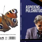 Francesco Branciamore, Jazz, Modern klassiek soloartist