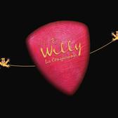 willy bird, Volksmuziek, Chanson, Akoestisch band