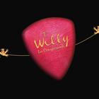 willy bird, Chanson, Volksmuziek, Akoestisch band