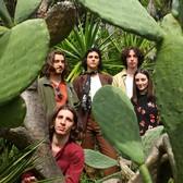 Mordo Mia, Rock, Alternatief, Indie Rock band