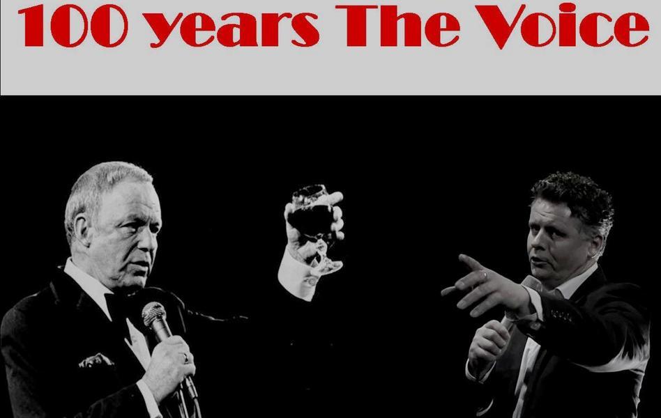 The voice vs the voice