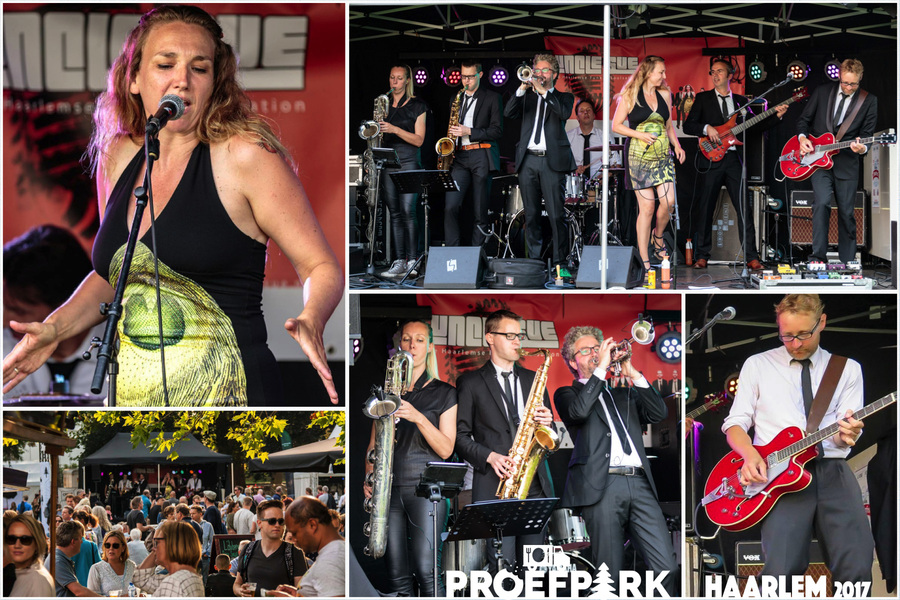 collageunclesueproefparkhaarlem2017a